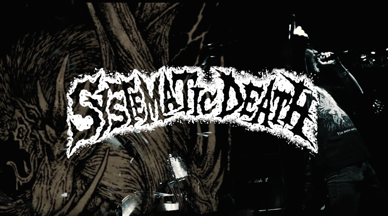 SYSTEMATIC DEATH new MV